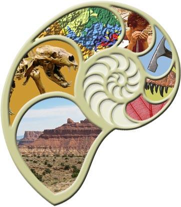 Paleontology Spiral Shell